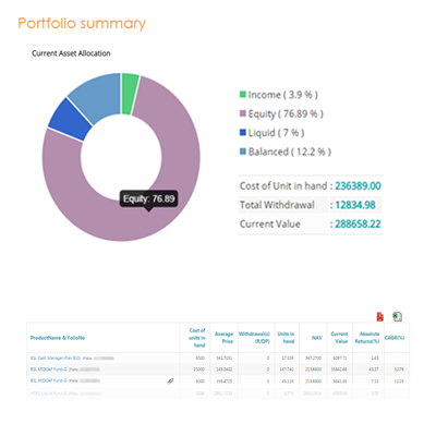 portfolio summary / Holding statement